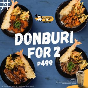 New Donburi Rice Bowls for 2